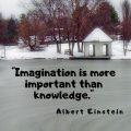 """Imagination is more important than knowledge."" Albert Einstein"