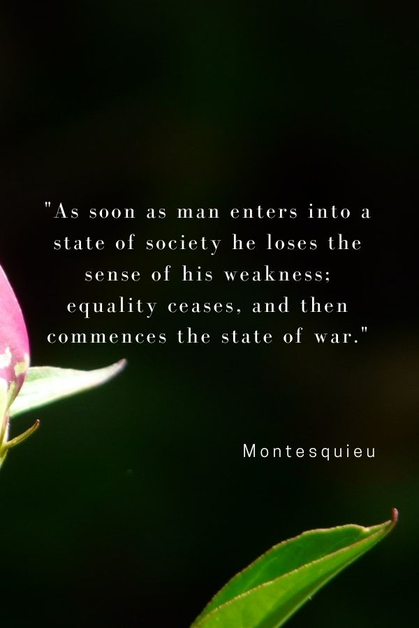 """""""As soon as man enters into a state of society he loses the sense of his weakness; equality ceases, and then commences the state of war.""""  Montesquieu"""