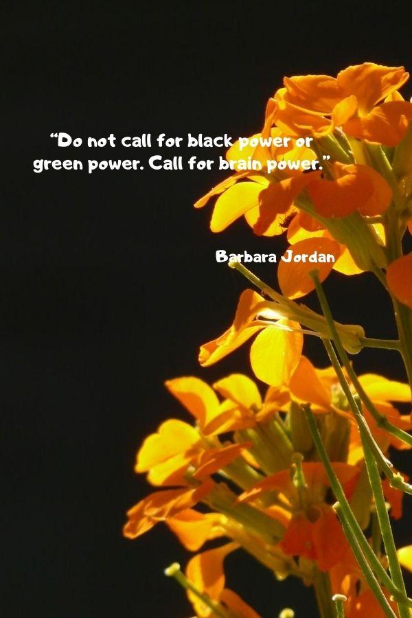 """""""Do not call for black power or green power. Call for brain power.""""  Barbara Jordan"""
