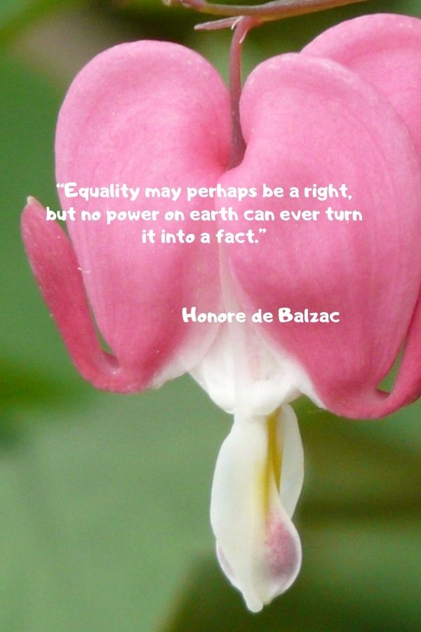 """""""Equality may perhaps be a right, but no power on earth can ever turn it into a fact.""""  Honore de Balzac"""