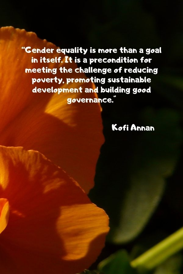 """""""Gender equality is more than a goal in itself. It is a precondition for meeting the challenge of reducing poverty, promoting sustainable development and building good governance.""""  Kofi Annan"""