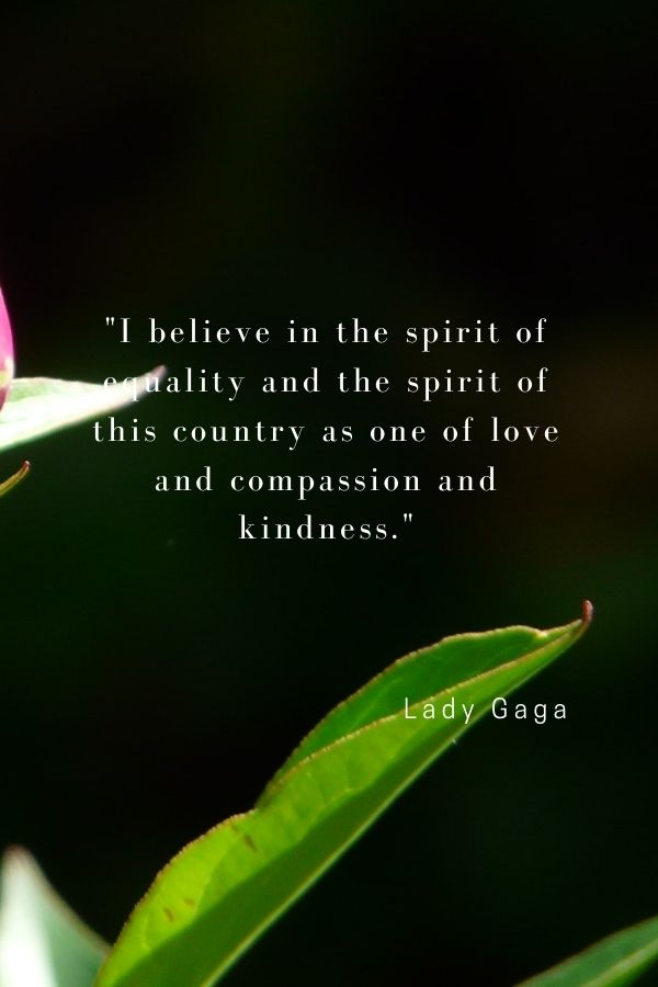 """""""I believe in the spirit of equality and the spirit of this country as one of love and compassion and kindness.""""  Lady Gaga"""