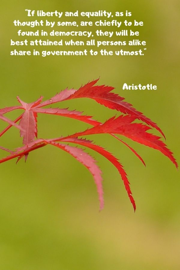 """""""If liberty and equality, as is thought by some, are chiefly to be found in democracy, they will be best attained when all persons alike share in government to the utmost.""""  Aristotle"""