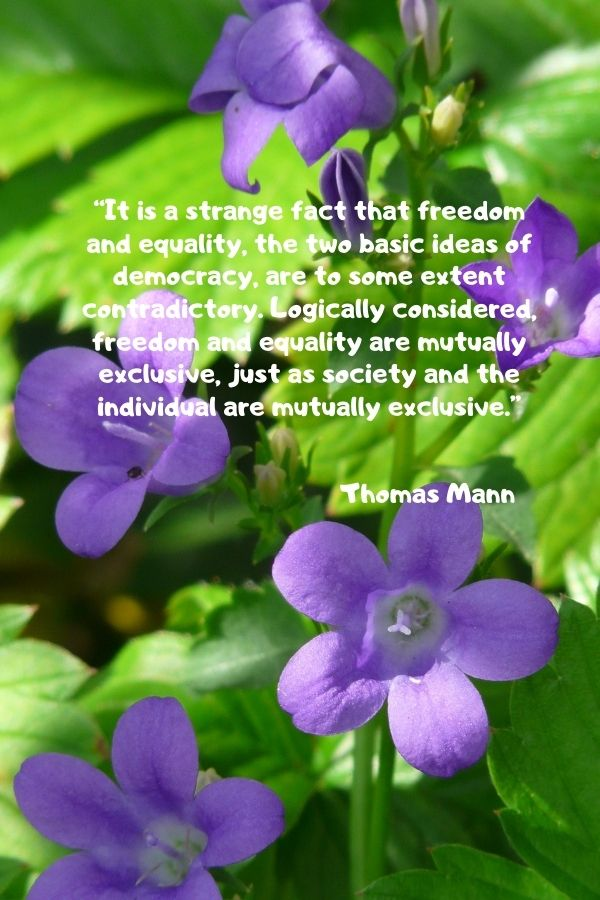 """""""It is a strange fact that freedom and equality, the two basic ideas of democracy, are to some extent contradictory. Logically considered, freedom and equality are mutually exclusive, just as society and the individual are mutually exclusive.""""  Thomas Mann"""