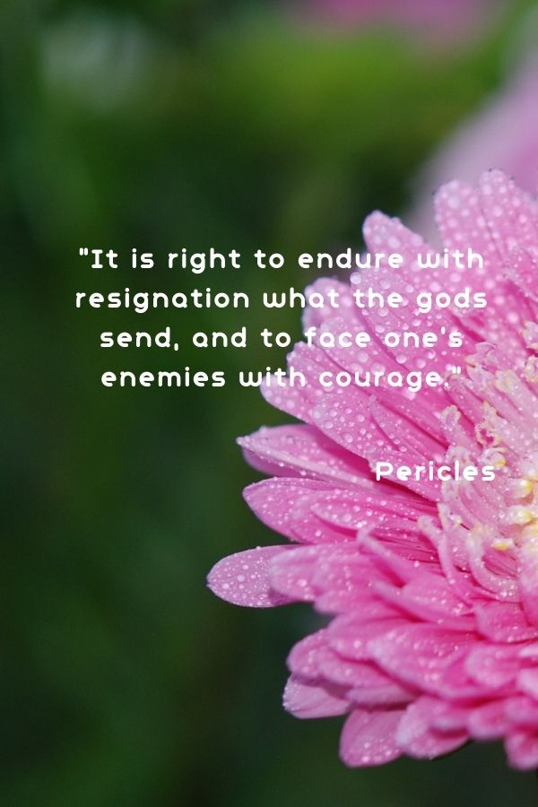 """""""It is right to endure with resignation what the gods send, and to face one's enemies with courage.""""  Pericles"""