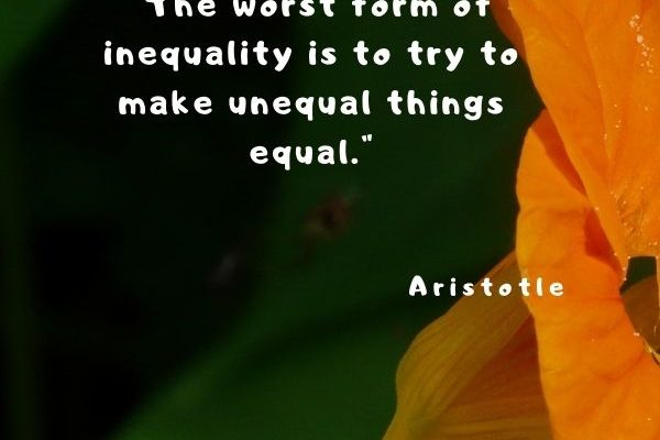 The worst form of inequality is to try to make unequal things equal