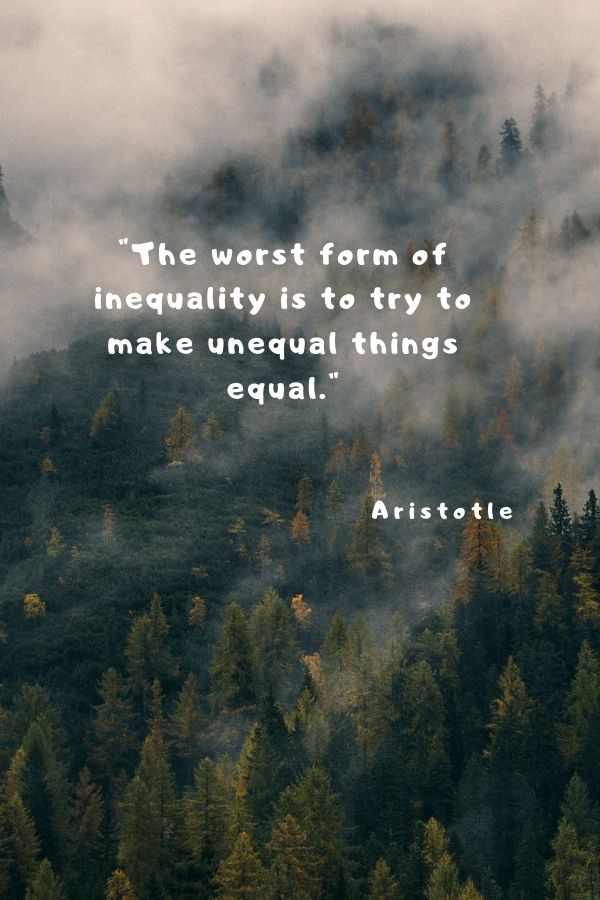 """""""The worst form of inequality is to try to make unequal things equal.""""  Aristotle"""