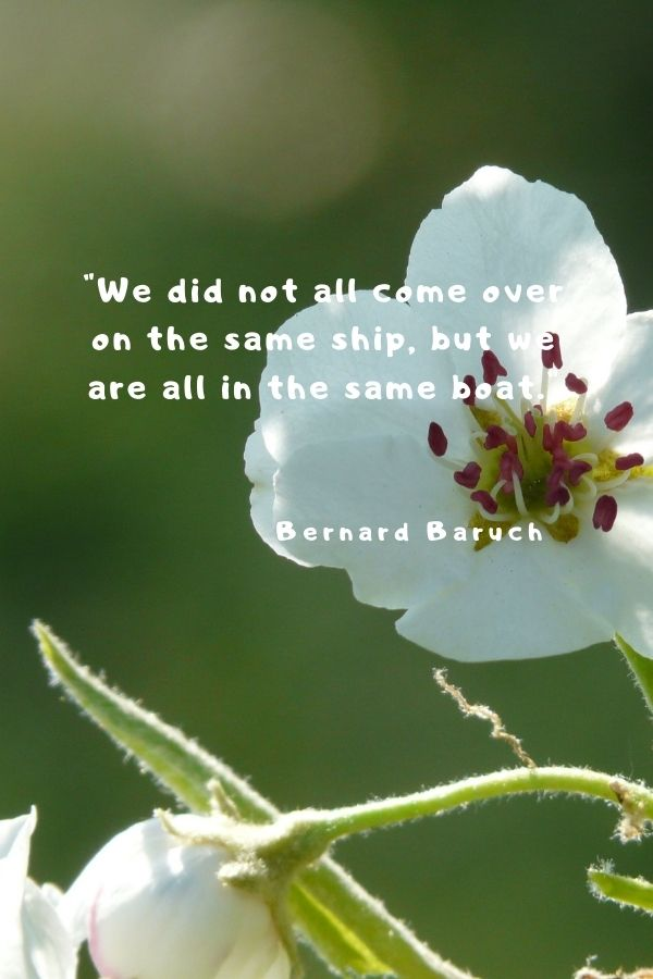 """""""We did not all come over on the same ship, but we are all in the same boat.""""  Bernard Baruch"""
