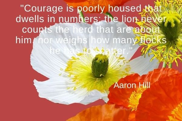 Courage is poorly housed that dwells in numbers