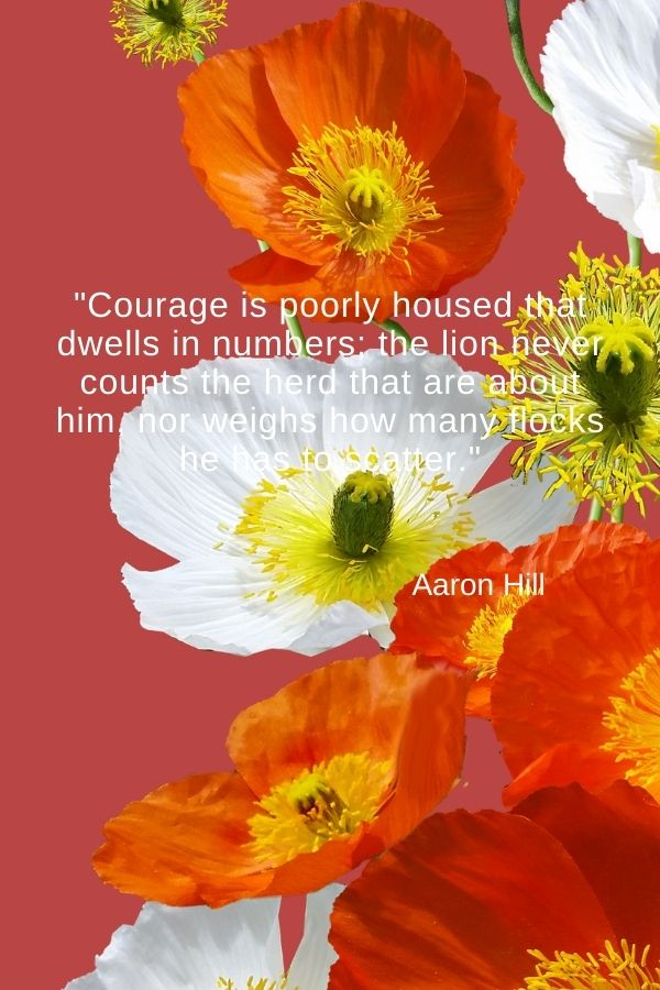 """Courage is poorly housed that dwells in numbers; the lion never counts the herd that are about him, nor weighs how many flocks he has to scatter."" Aaron Hill"
