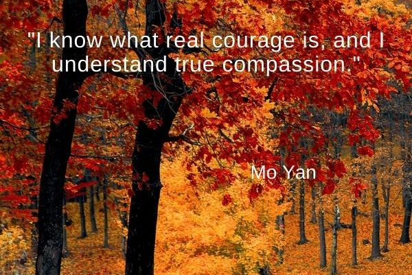 I know what real courage is, and I understand true compassion