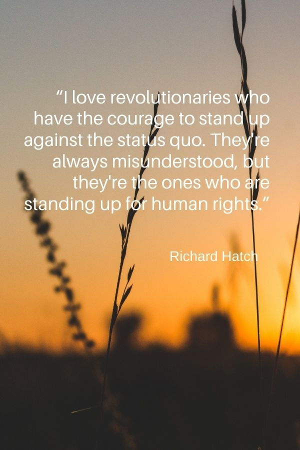 """I love revolutionaries who have the courage to stand up against the status quo. They're always misunderstood, but they're the ones who are standing up for human rights.""  Richard Hatch"