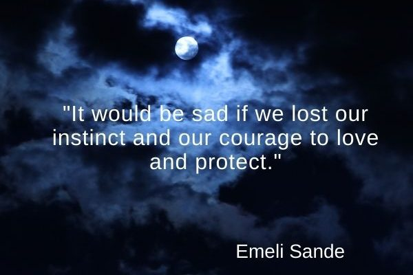 It would be sad if we lost our instinct and our courage to love and protect