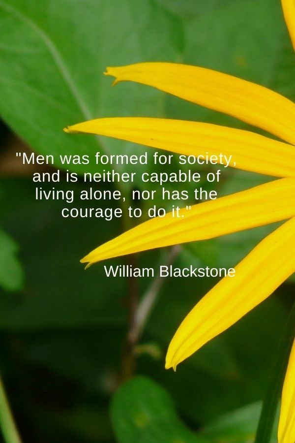 """""""Men was formed for society, and is neither capable of living alone, nor has the courage to do it.""""  William Blackstone"""