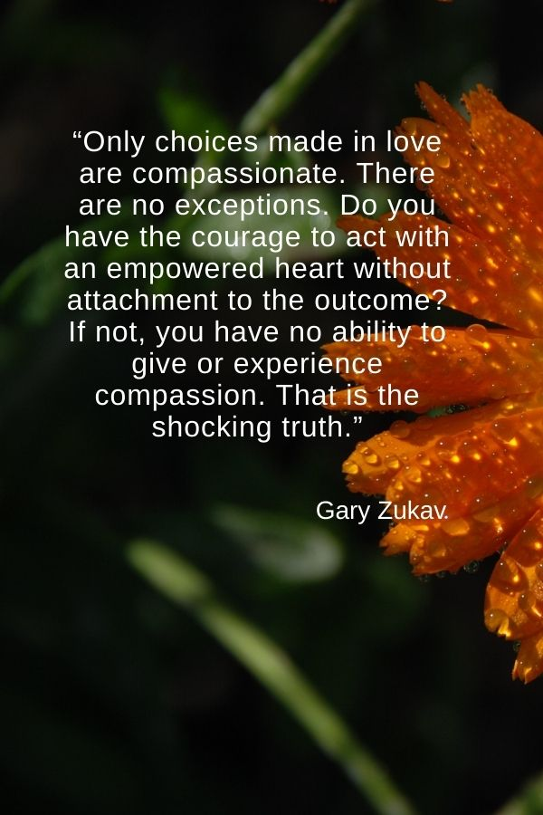 """""""Only choices made in love are compassionate. There are no exceptions. Do you have the courage to act with an empowered heart without attachment to the outcome? If not, you have no ability to give or experience compassion. That is the shocking truth.""""  Gary Zukav"""