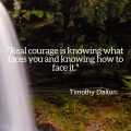 """Real courage is knowing what faces you and knowing how to face it."" Timothy Dalton"