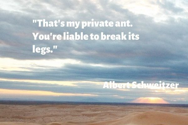 That's my private ant. You're liable to break its legs.